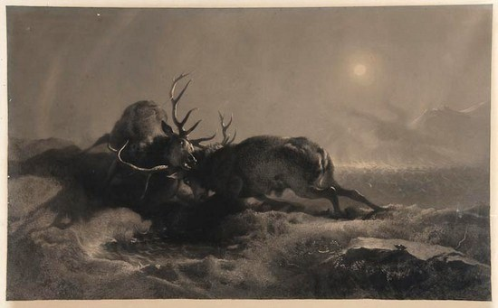 sir edwin landseer night two stags battling by moonlight