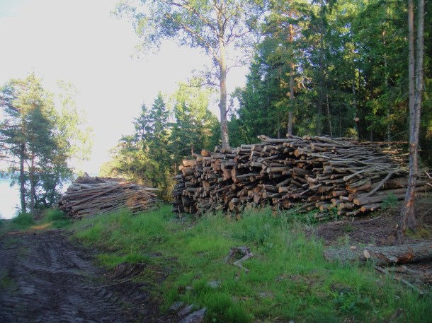 uto island logging