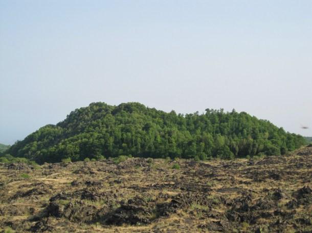 etna lava fields