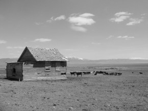 Photo Of The Day: Moorman Ranch