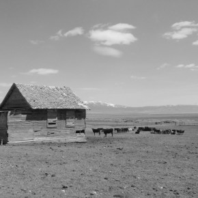 Photo Of The Day: MoormanRanch