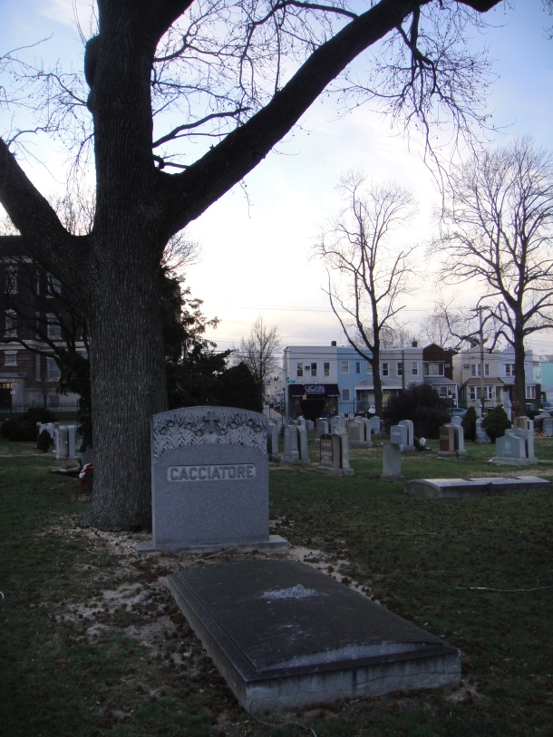 saint john cemetery new york