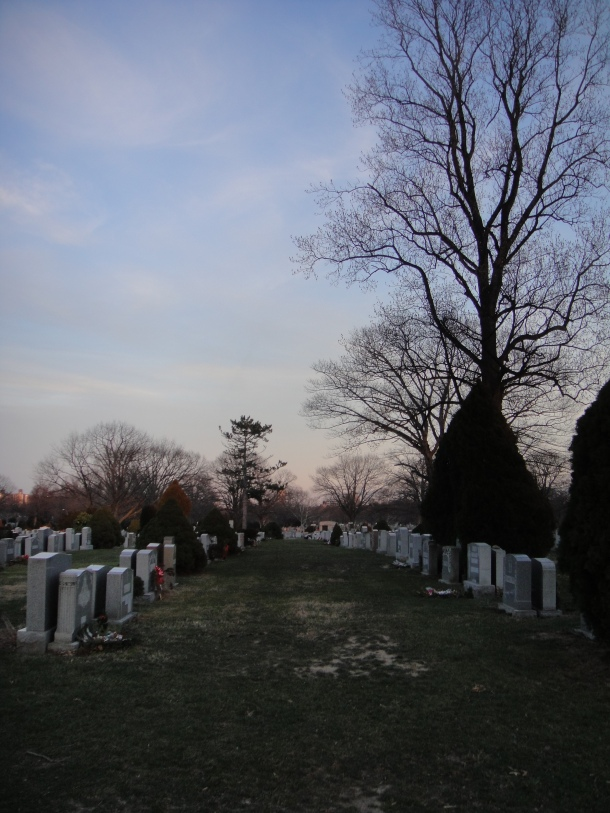 saint john cemetery queens