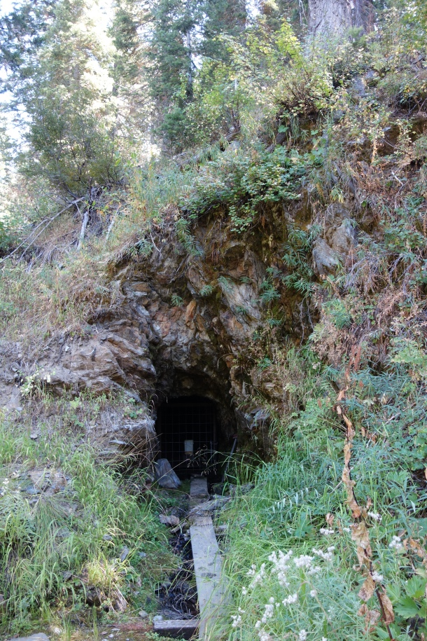 Winkeye Mine - Hawkeye Tunnel