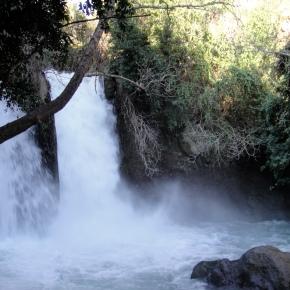 Banias Nature Reserve,Israel