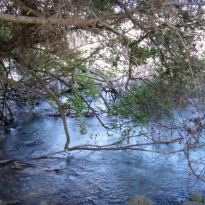 Tel Dan, The Dan River And The Largest Karst Spring In The MiddleEast…