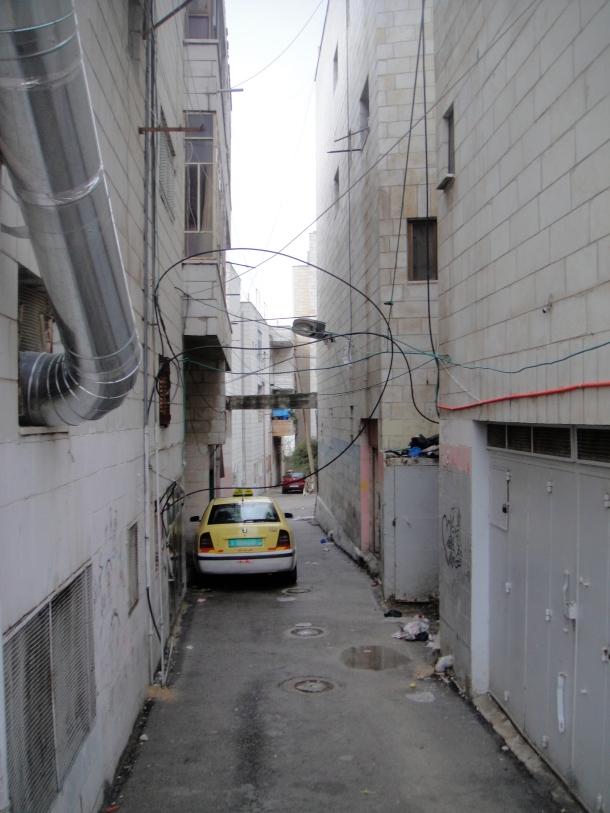 palestine qaddura camp