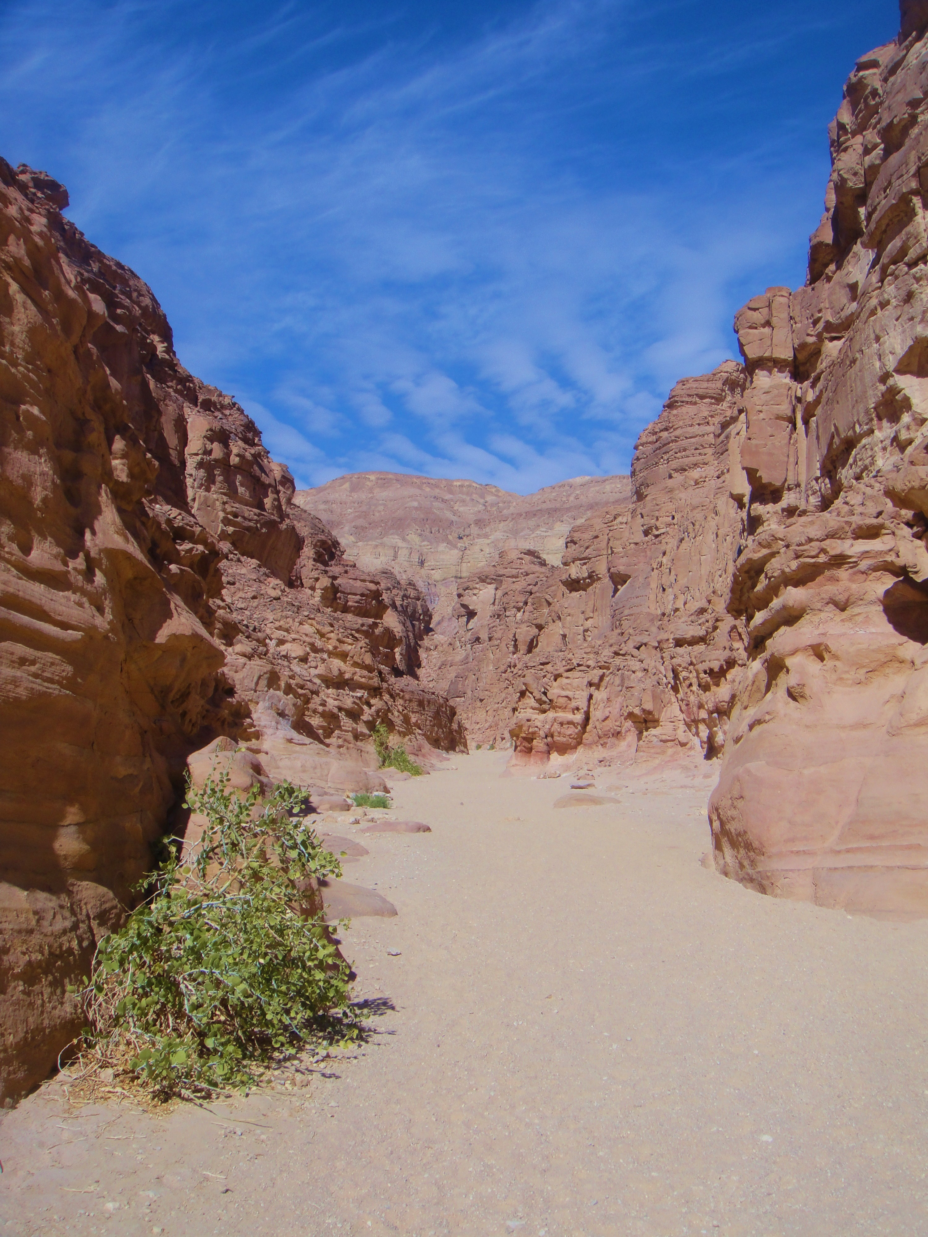 The Sinai Peninsula   The Velvet Rocket