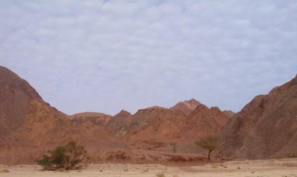 sinai desert egypt