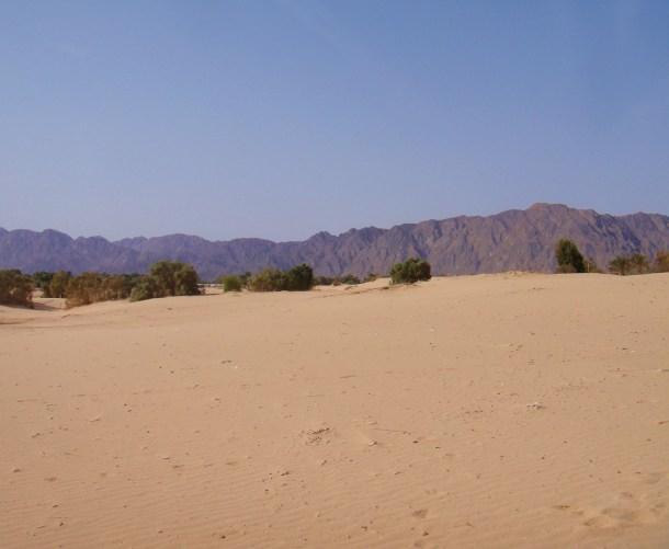 sinai desert landscape