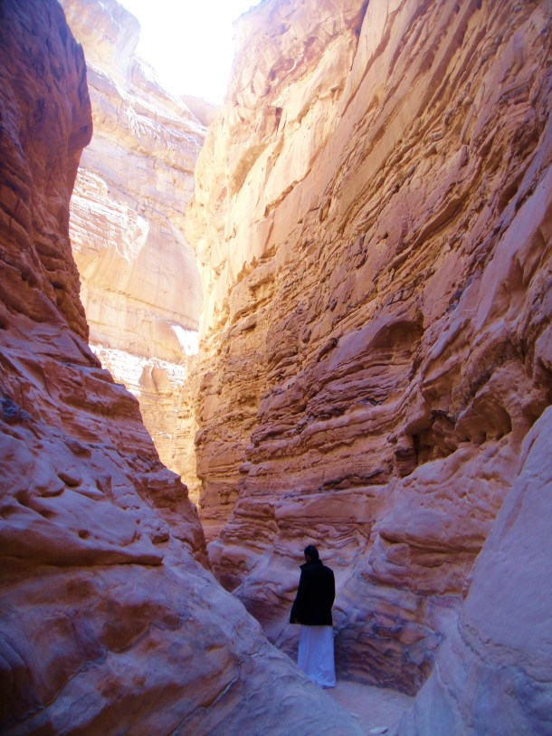 sinai desert smuggling trail