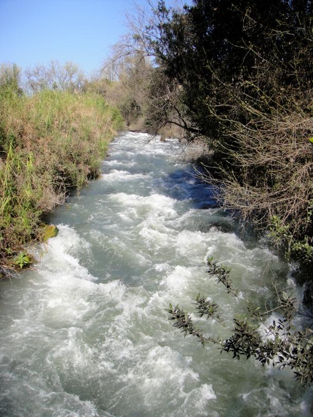 tel dan nature reserve dan river