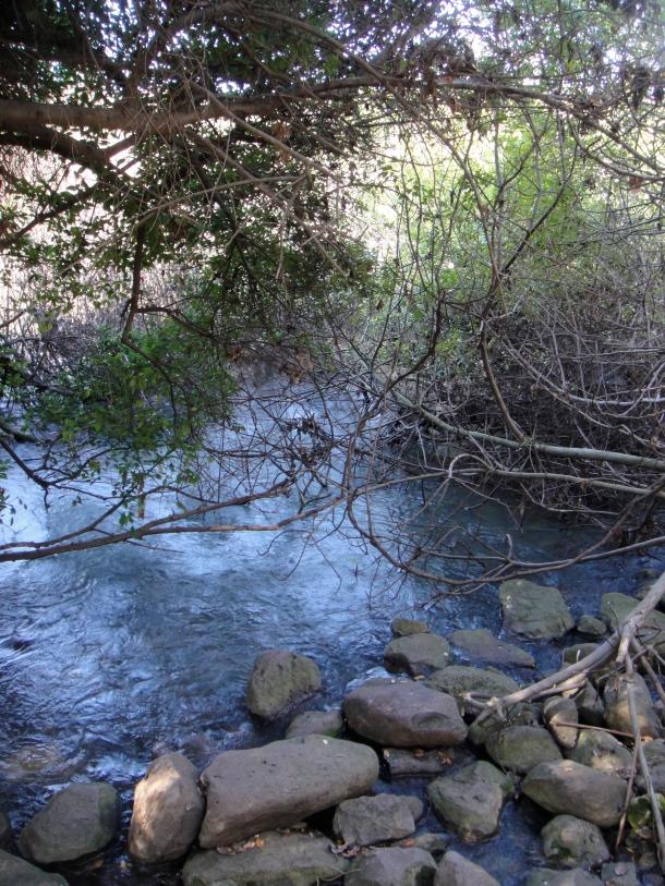 tel dan nature reserve karst spring