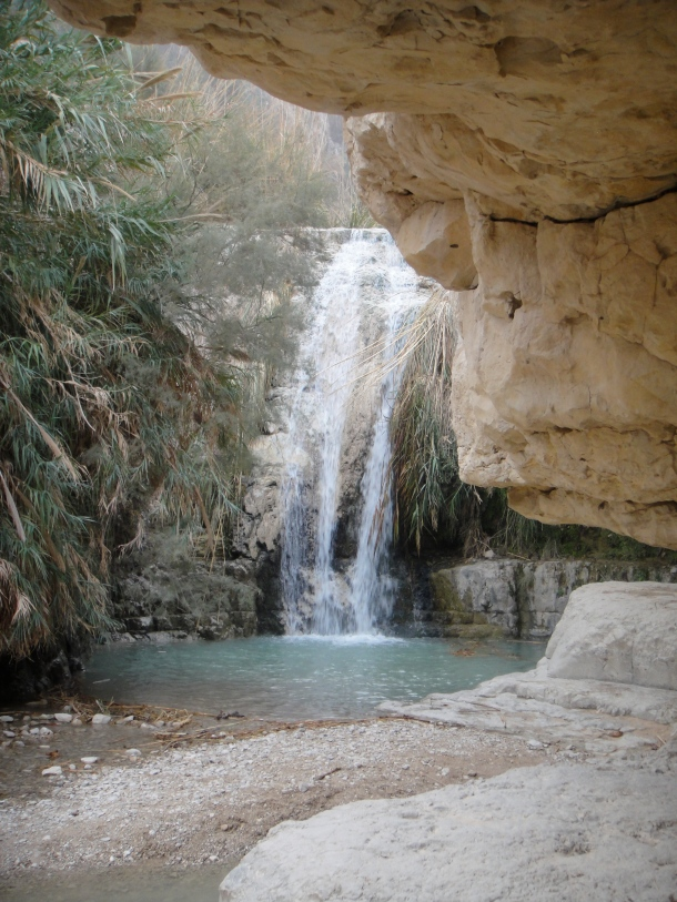waterfall ein gedi nature reserve
