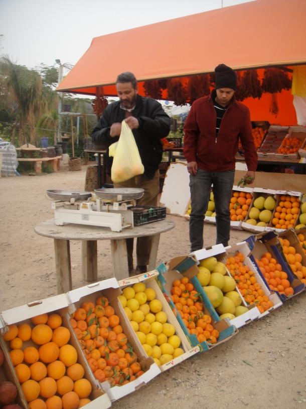 fruit seller west bank