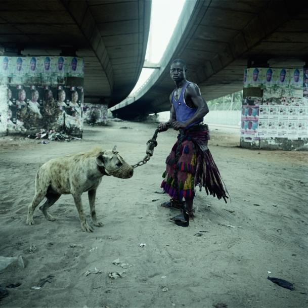 pieter hugo nigeria hyena