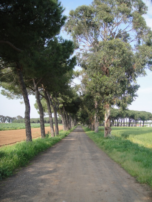 italian partisans farm