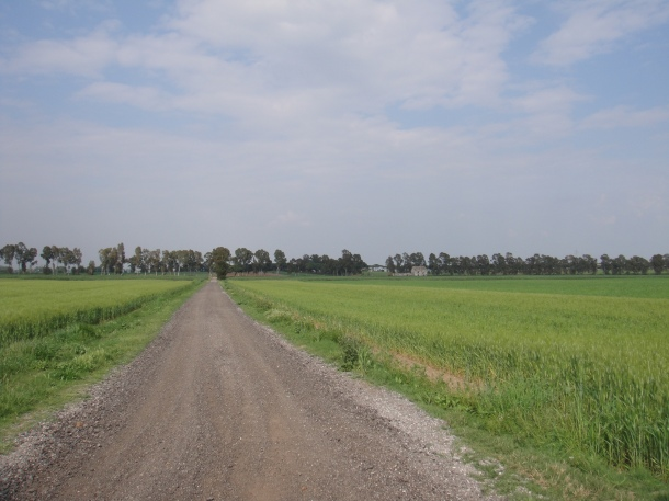 partisans farm