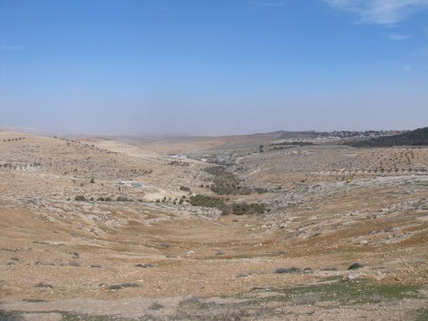 maon settlement