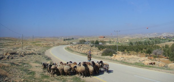 road to susiya