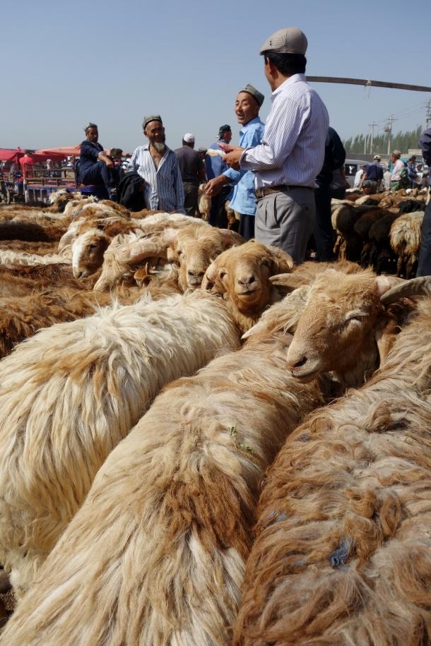 kashgar-livestock-bazaar