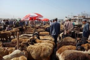 The Kashgar LivestockMarket