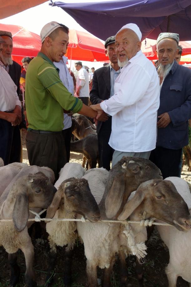 livestock-bazaar-kashgar