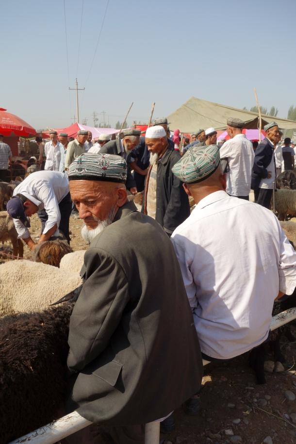 livestock-market-kashgar