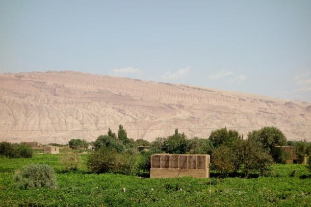 raisin-hut-turpan