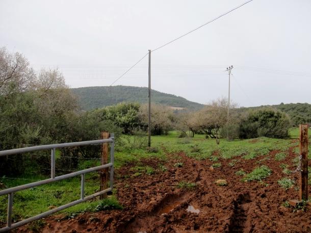 inbar-kibbutz
