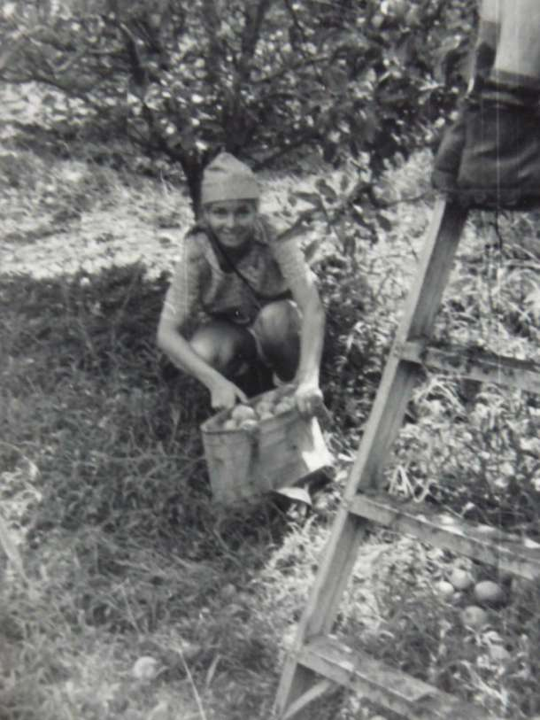 ma'anit-1972-picking-apples