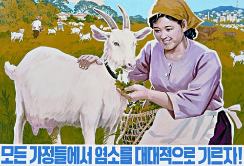 goats-north-korean-art