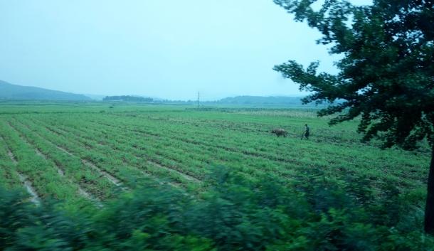 farm-dmz