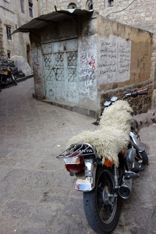motorcycle-yemen