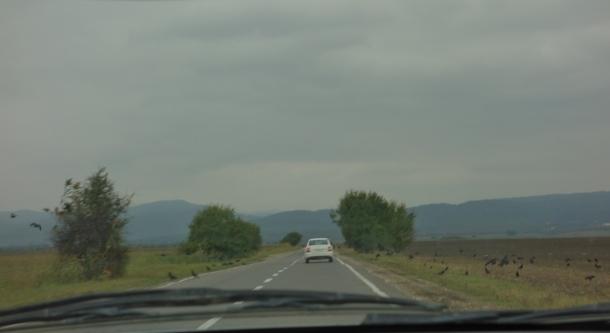road-to-yandi