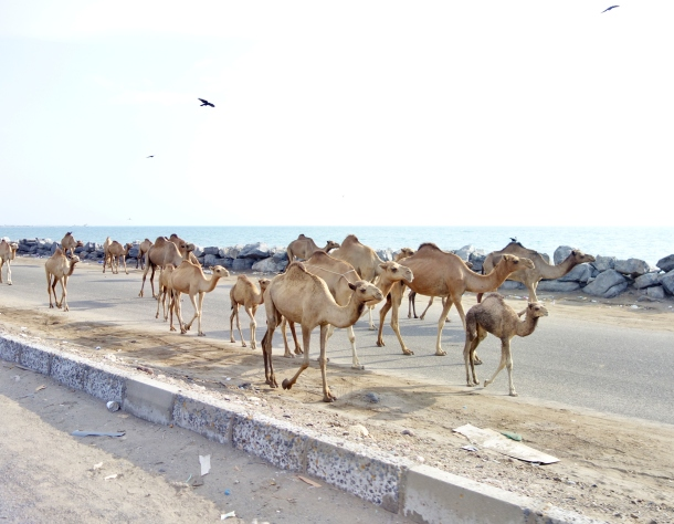 Al-Hudaydah