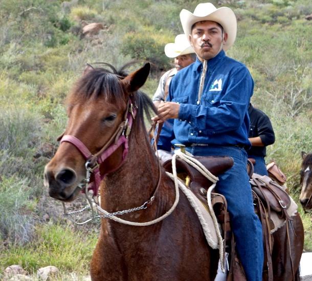 mexican-cowboy