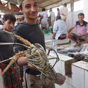 The Hodeida FishMarket