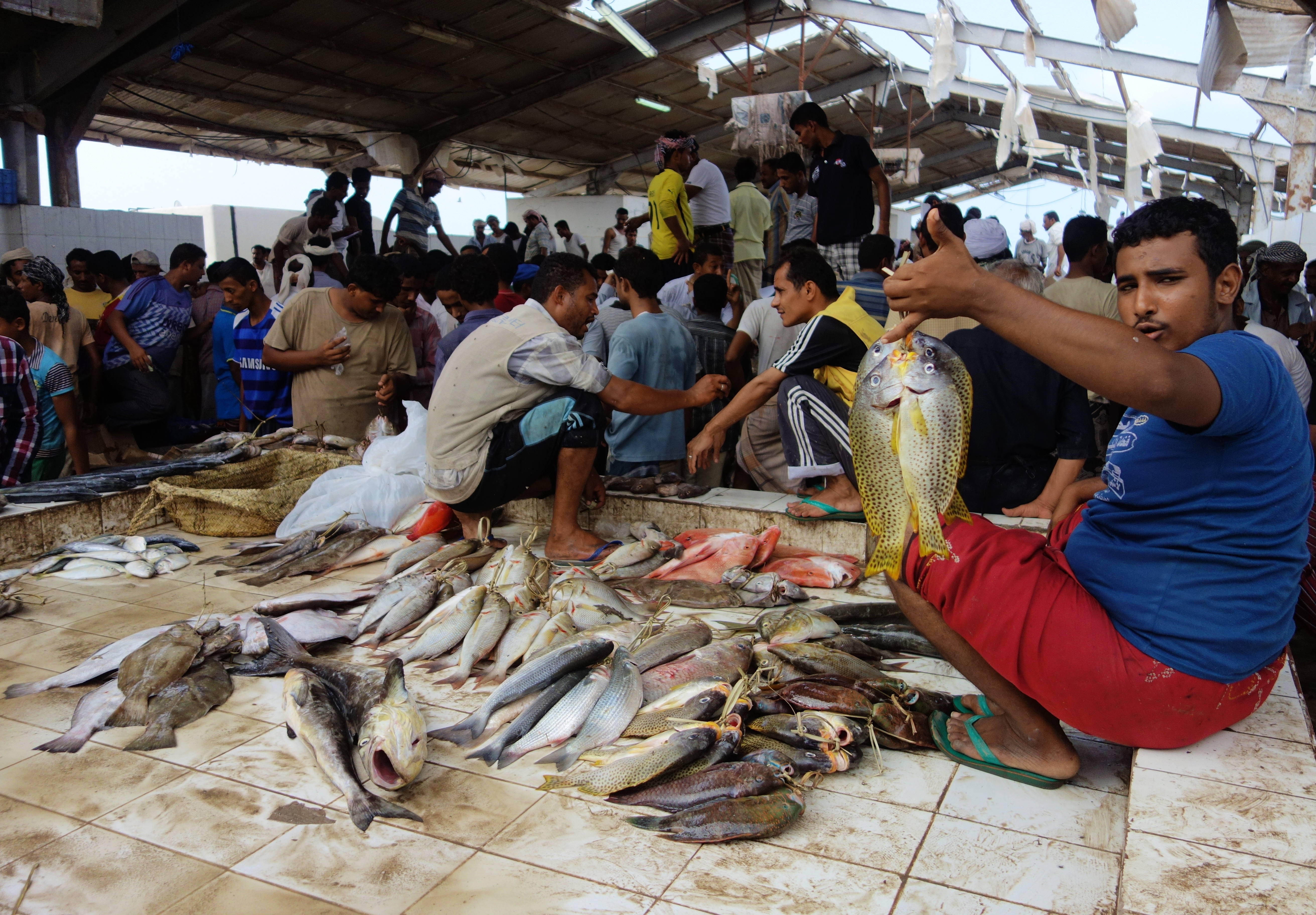 The Hodeida Fish Market  The Velvet Rocket