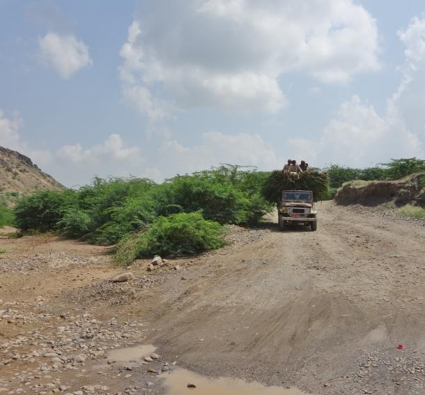 landscape-yemen-river-crossing