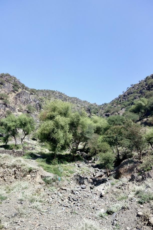 yemen-landscapes