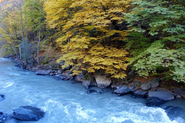 argun-river-chechnya