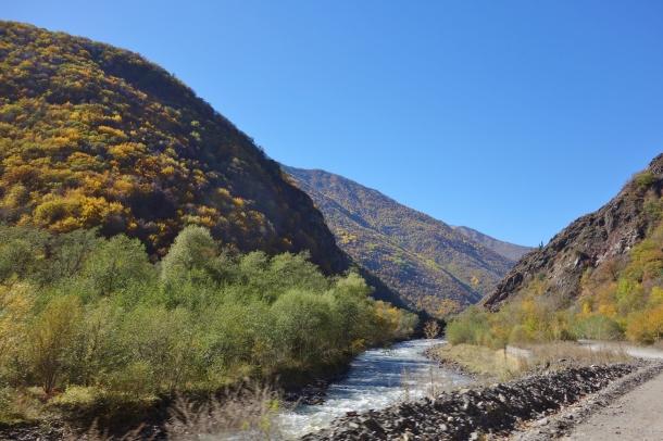 road-through-argun-gorge